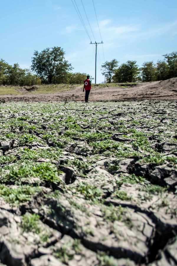 withered earth through drought