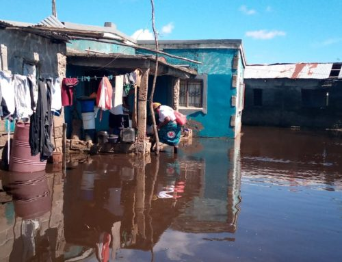 Anticipating the flood: Taking early actions at the Lower Limpopo in Mozambique